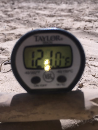 Soil temp in Flint, Txcan ge thtis highy and bare soil is a no- no. Mulch is your trees friend, we can install it!