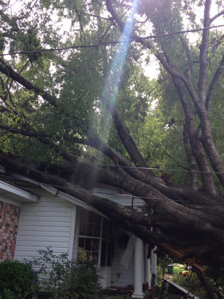 emergency tree removal in Tyler, TX
